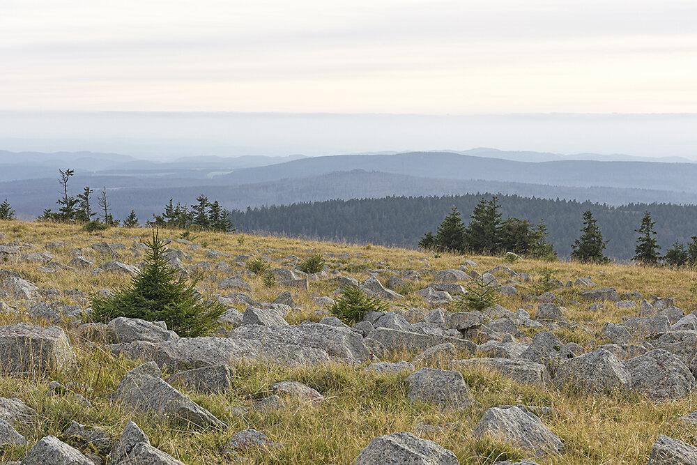 Berg-Brocken-Harz.JPG